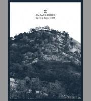 X Ambassadors: Spring Tour Poster, Quinine 2014